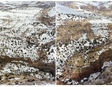 "Laura McPhee<br /> <em>Calf Creek Canyon From Devils Backbone Highway, Utah </em>(diptych)<em>, </em>2010<br /> Archival Pigment Ink Prints<br /> 24 x 60""      Edition of 5<br /> 30 x 80""      Edition of 5<br /> 40 x 100""    Edition of 5<br /> 50 x 120""    Edition of 5<br /> 60 x 150""    Edition of 5"
