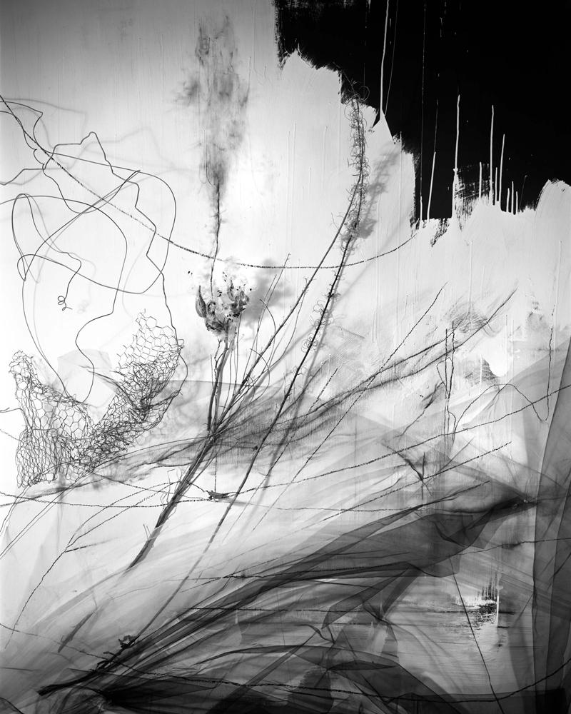 "Lauren Semivan<br /> <em>Pendulum,</em>2015<br /> Archival ink print<br /> 24 x 30""  Edition of 10<br /> 40 x 50""  Edition of 5"