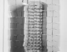 """Delphine Burtin<br /> <em>Untitled, Encouble series</em>, 2012<br /> Archival pigment print<br /> 12 x 8.5""""  Edition of 10 (plus 2 APs)"""