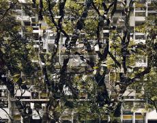 """Stèphane Couturier<br /> <em>Brasilia, Superquadras no. 4, 2007/2010</em><br /> Chromogenic prints<br /> 39 x 48""""  Edition of 5<br /> 71 x 86""""  Edition of 5"""