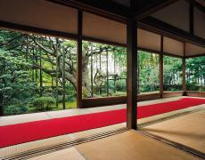 "Jacqueline Hassink<br /> <em>Hōsen-in 1, summer,Northeast Kyoto,29 June 2004 (16:00–17:30)</em><br /> Chromogenic prints<br /> 41 x 51"", 50 x 63"", and63 x 79"" Shared edition of 7<br />"