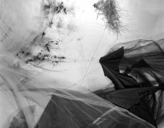 "Lauren Semivan<br /> <em>Lining,</em>2016<br /> Archival ink print<br /> 24 x 30""  Edition of 10<br /> 40 x 50""  Edition of 5"