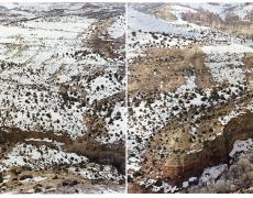 "Laura McPhee<br /> <em>Calf Creek Canyon From Devils Backbone Highway, Utah </em>(diptych)<em>, </em>2010<br /> Archival Pigment Ink Prints<br /> 24 x 60""   Edition of 5<br /> 30 x 80""   Edition of 5<br /> 40 x 100""  Edition of 5<br /> 50 x 120""  Edition of 5<br /> 60 x 150""  Edition of 5"