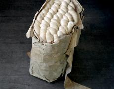 "Christopher Payne<br /> <em>Silk Skeins from Japan Klotz Silk Throwing Mill, Lonaconing, MD, </em>2011<br /> Archival pigment ink prints<br /> 24 x 20""  Edition of 20<br /> 50 x 40""  Edition of 10<br /> 60 x 50""  Edition of 5"