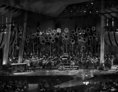 "Matthew Pillsbury<br /> <em>New York Philharmonic, The Cunning Little Vixen, Thursday, June 23, 2011</em><br /> Archival pigment ink prints<br /> 13 x 19"" Edition of 20<br /> 30 x 40"" Edition of 10<br /> 50 x 60"" Edition of 3"