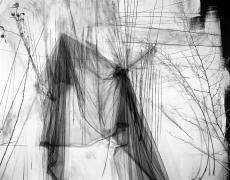 "Lauren Semivan<br /> <em>May, </em>2011<br /> Archival ink prints<br /> 24 x 30""  Edition of 10<br /> 40 x 50""  Edition of 5"