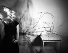 "Lauren Semivan<br /> <em>The Swan, </em>2010<br /> Archival ink prints<br /> 24 x 30""  Edition of 10<br /> 40 x 50""  Edition of 5"