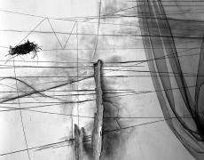 "Lauren Semivan<br /> <em>Wishbones, </em>2011<br /> Archival ink prints<br /> 30 x 24""  Edition of 10<br /> 50 x 40""  Edition of 5"