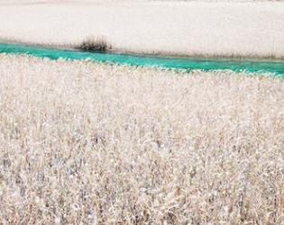 Josef Joflehner Turquoise Stream Jiuzhaigou China